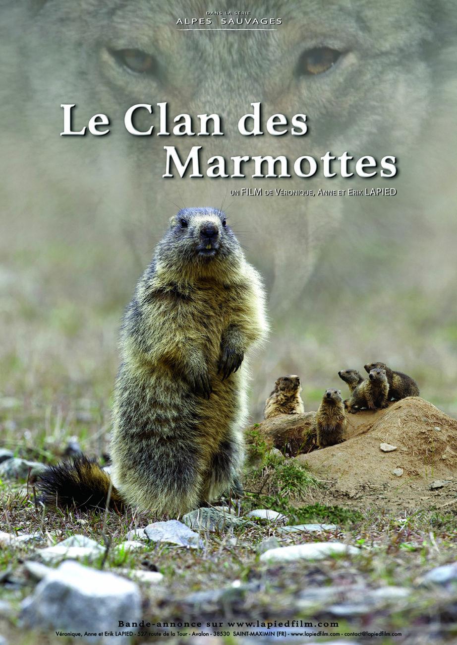 Le clan des marmottes – 20h
